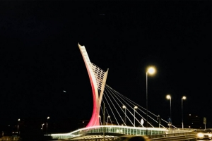 "The ""rose"" bridge"